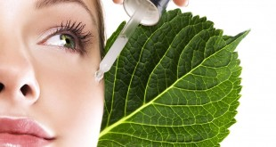 6 Βότανα και άλλα συστατικά που αποτρέπουν τη γήρανση
