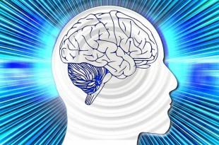 Γίνετε Πιο Έξυπνοι Με Αυτές Τις 7 Δραστηριότητες!
