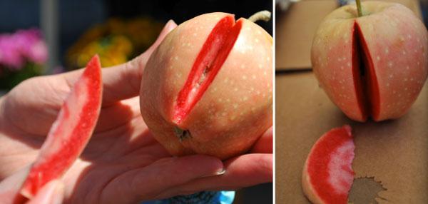 Μήλο με ροζ σάρκα