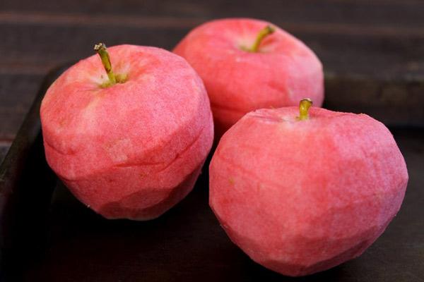 Μήλο με Ροζ Σάρκα Βγαλμένο από τη Φαντασία! Δείτε τις Εντυπωσιακές  Φωτογραφίες! - share24.gr