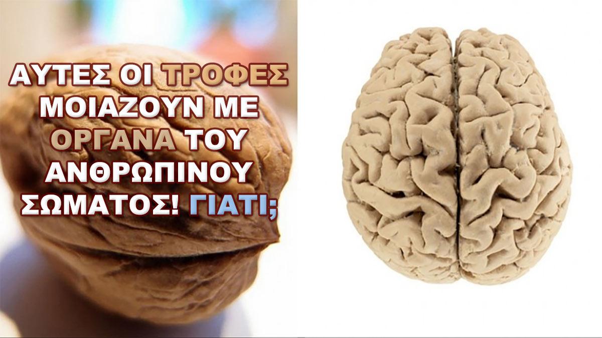 http://share24.gr/wp-content/uploads/2016/06/aftes-i-trofes-miazoun-me-organa-tou-anthropinou-somatos-mathete-to-logo-ke-kante-ti-syndesi.jpg
