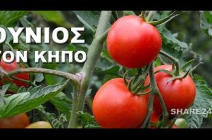 Οι Καλλιεργητικές εργασίες του Ιουνίου στον Κήπο Σας