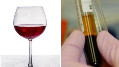Τρόφιμα που μοιάζουν με μέρη του σώματος - Κρασί και Αίμα