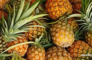 Ανανάς 16 Λόγοι για τους οποίους θα Πρέπει να Τρώτε Περισσότερο Ανανά