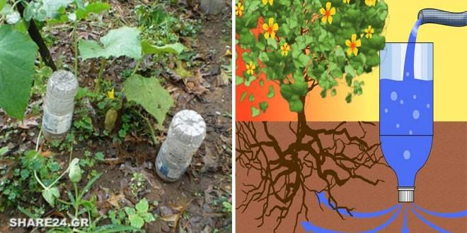 Με αυτό το Κόλπο Θα Ποτίζετε Εύκολα τα Φυτά σας Χωρίς Κόπο