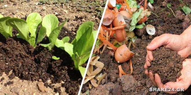 Φτιάξτε Κομπόστ στον Κήπο Σας για Βιολογική Λίπανση των Φυτών σας Όλο το Χρόνο Διαβάστε πως να το κάνετε