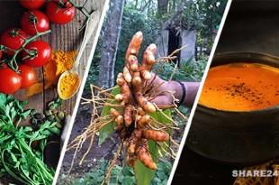 Φτιάξτε Ζεστή Ντοματόσουπα με Κουρκουμά σε 15 Λεπτά και Γιατρευτείτε από τα Πάντα