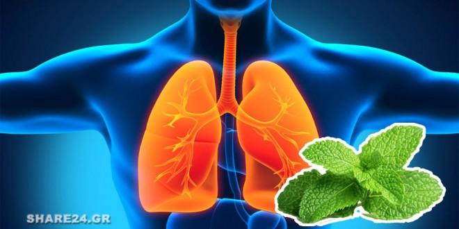 Καθαρίστε τους Πνεύμονές Σας με Λάδι Μέντας peppermint oil