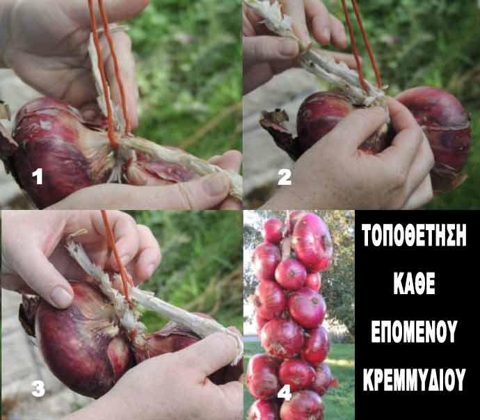 Περάστε κάθε επόμενο κρεμμύδι στην πλεξούδα