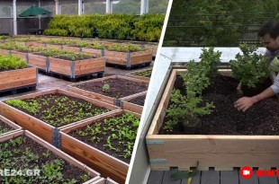 Πως θα Φτιάξετε Παρτέρια για να Φυτέψετε στον Κήπο, στην Αυλή ή στην Ταράτσα του Σπιτιού Σας