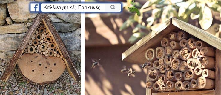 Κάντε Μερικές Τρύπες σε ένα Κομμάτι Ξύλου & Κρεμάστε το στον Κήπο Σας για να Αυξήσετε την Παραγωγή των Καλλιεργειών Σας - Σπιτάκια για μέλισσεςτάκια