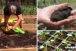 Προετοιμάστε τον Κήπο Σας Για τις Ανοιξιάτικες Εργασίες – Διαβάστε Όσα Πρέπει να Ξέρετε Πριν Φυτέψετε