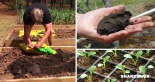Προετοιμάστε τον Κήπο Σας Για τις Ανοιξιάτικες Εργασίες - Διαβάστε Όσα Πρέπει να Ξέρετε Πριν Φυτέψετε
