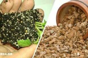 Χρησιμοποιήστε τον Βερμικουλίτη για να Φυτέψετε στον Κήπο & στις Γλάστρες Σας