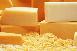 Γνωρίζατε ότι το τυρί προκαλεί εθισμό; Αν σας αρέσει ίσως είστε εθισμένοι σε αυτό!
