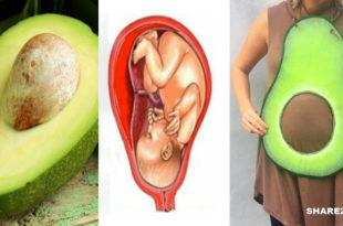 Γιατί το Αβοκάντο Μοιάζει με την Κοιλιά της Γυναίκας στην Εγκυμοσύνη; Οι Ιδιότητές του Υπερ της Γονιμότητας