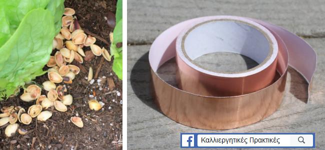 Διώξτε τους γυμνοσάλιαγκεα από τον κήπο - τσόφλια - ταινία χαλκού