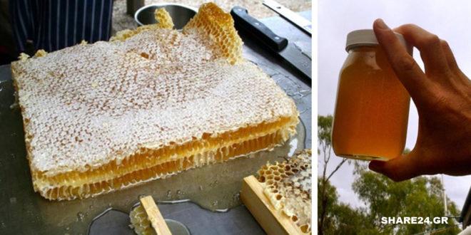 Πώς να μαζέψετε Μέλι από Φυσική Κηρήθρα
