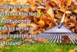 9 Πράγματα που Πρέπει να Κάνετε το Φθινόπωρο στον Κήπο για να τον Προετοιμάσετε για το Χειμώνα