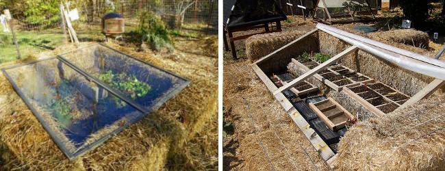 Κατασκευάστε μια ψυχροστρωμνή για να προστατεύσετε τα φυτά σας από τον παγετό