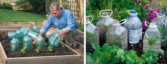 Χρησιμοποιείστε πλαστικά ή γυάλινα μπουκάλια για να προστατεύσετε τα φυτά σας από τον παγετό
