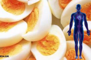 12 Πράγματα που Συμβαίνουν στον Οργανισμό Μας όταν Τρώμε Αυγά.