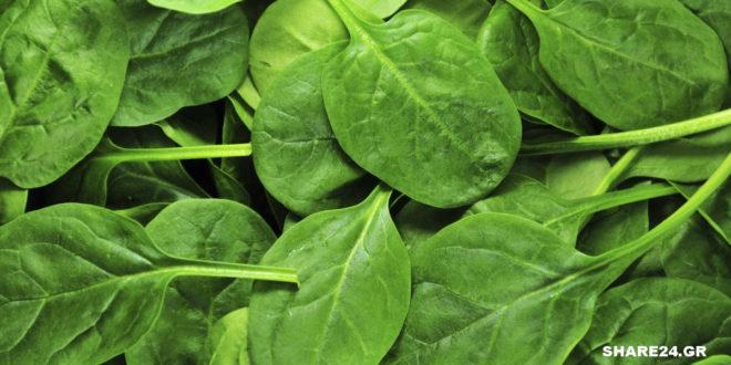 5 Λόγοι για να Τρώμε Σπανάκι Κάθε Μέρα και μάλιστα με την Έγκριση της Επιστήμης!