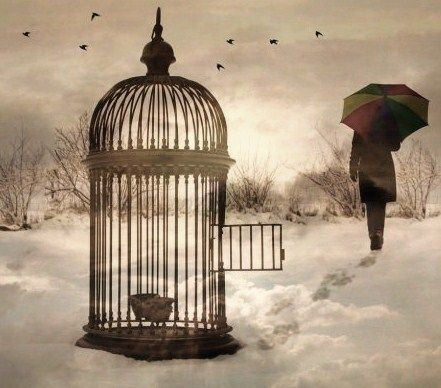 Άνοιξε το κλουβί σου και ελευθερώσου