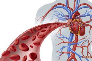 10 Σημάδια που Προειδοποιούν ότι η Καρδιά δεν Λειτουργεί Σωστά και Πρέπει να τα Ξέρουμε Νωρίς!