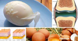 Τα Αυγά Αυξάνουν το Κολλαγόνο στον Οργανισμό χαρίζοντας Υγεία στο Δέρμα & τις Αρθρώσεις! Διαβάστε Πώς!